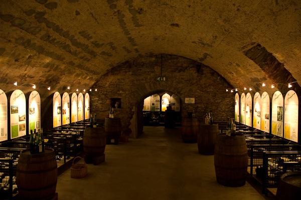 Weinkeller in Bernkastel-Kues