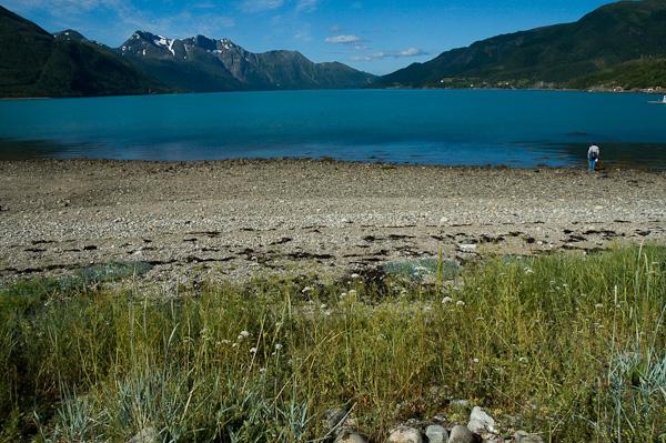 Fjord am Svartisen Nationalpark