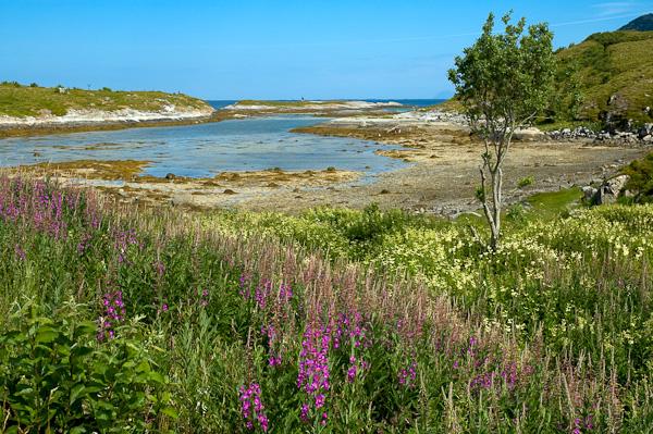 Landschaft auf Støtt