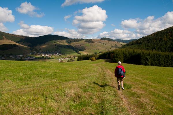 Wanderin bei Bernau auf einer Viehweide
