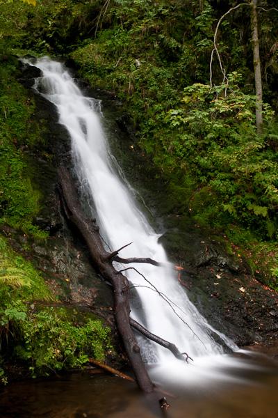 Wasserfall mit Baumstamm