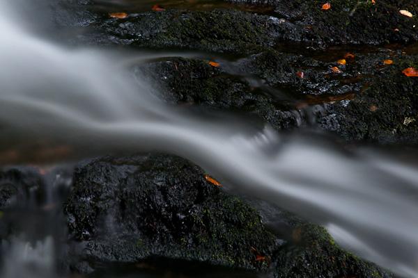 Strömung von einem Bach im Schwarzwald