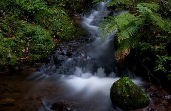 Wasserfall und bemooste Steine
