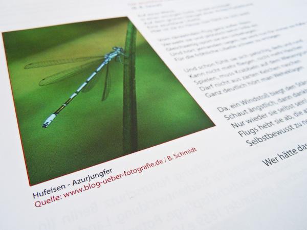 Referenz - Zeitschrift COUNTDOWN 2010