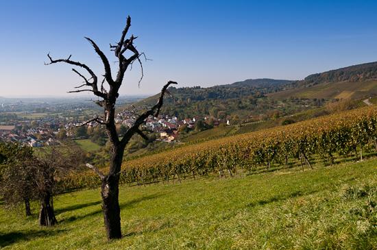 Remshalden-Grunbach