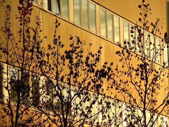 Fassade im Morgenlicht