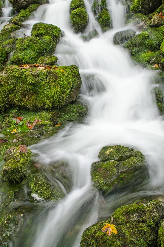 Fliessendes Wasser und grünes Moos
