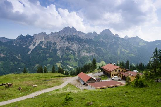 Krinnenalpe 1530 m