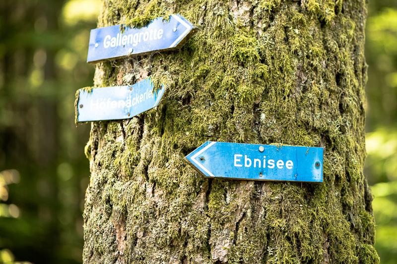 Wanderschilder am Ebnisee