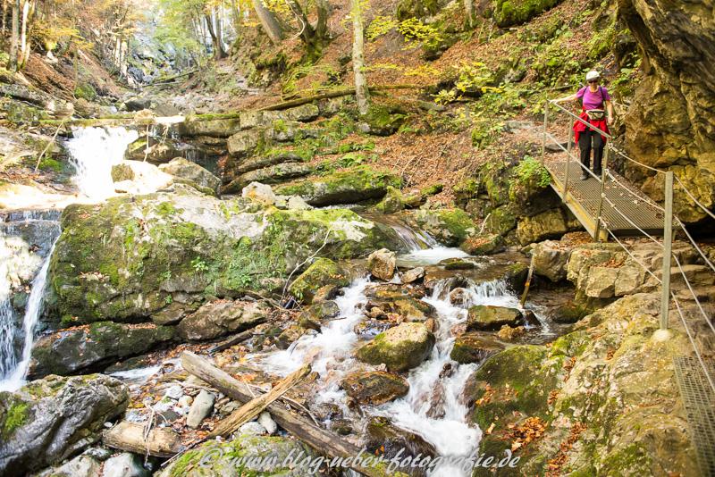 Wandersteig im Faltenbachtobel