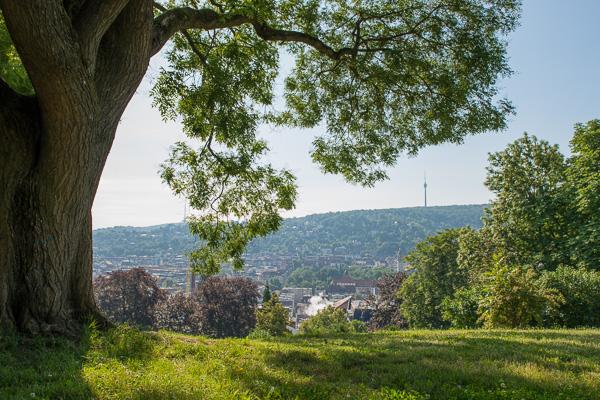 Blick von der Karlshöhe auf den Fernsehturm