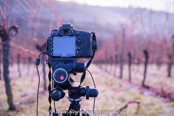Kamera mit Stativ im Weinberg