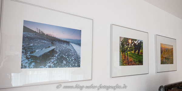 Fotos aus dem Weinberg im Wohnzimmer