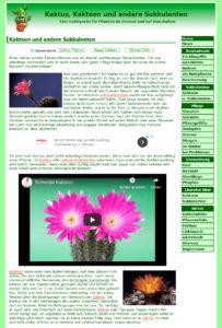 www.kaktus-kakteen-sukkulenten.de