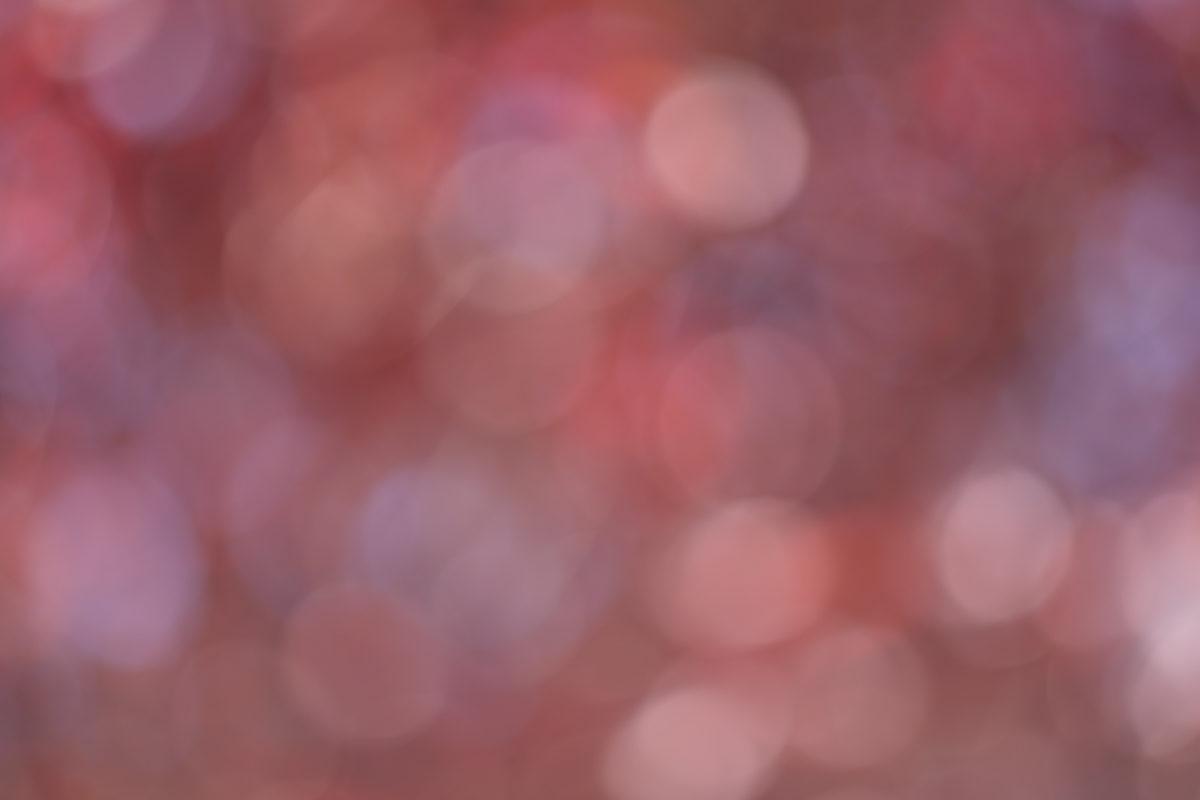 Kirschblüten-Bokeh mit Helios 44-2 - 58 mm